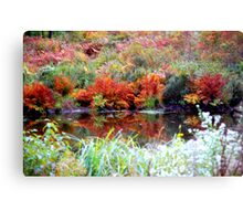Autumn by a Pond in Vermont Canvas Print