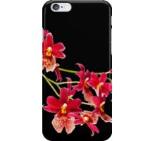 Orchid - 50 iPhone Case/Skin