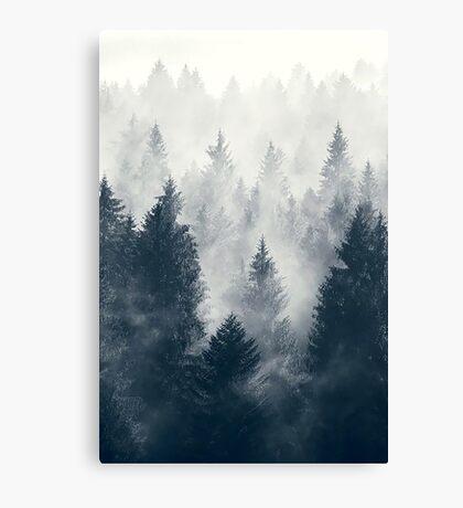 Nature trees Canvas Print