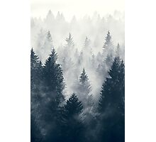 Nature trees Photographic Print
