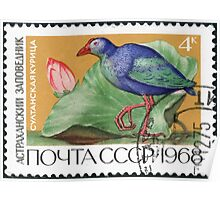 Fauna series The Soviet Union 1968 CPA 3674 stamp Purple Swamphen and Lotus Astrakhan Nature Reserve cancelled USSR Poster