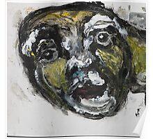 Face, Bernard Lacoque-30 Poster