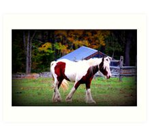 Autumn in Vermont: Horse Farm in New England Art Print