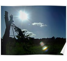 catapulting the sun Poster