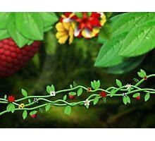 Deep forest plants illustration Photographic Print