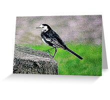 Fractalius Pied Wagtail Greeting Card
