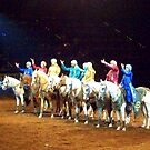 Arabian Line-up by Kaitlyn Blackmer