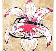 Splitty Flower Photographic Print