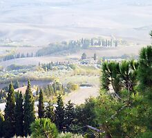 Tuscan Landscape Two by artfulvistas