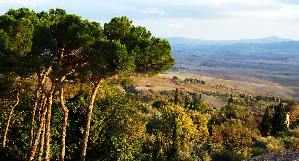 Tuscan Landscape three by artfulvistas