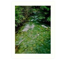 Talbach . Rohrmoos - Untertal . Austria. by Brown Sugar.2004. views (112) Danke !!!!  Thank you friends !!! Art Print