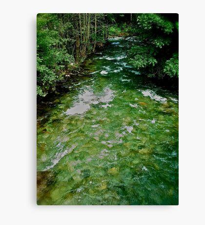 Talbach . Rohrmoos - Untertal . Austria. by Brown Sugar.2004. views (112) Danke !!!!  Thank you friends !!! Canvas Print