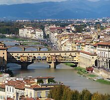 Firenze view  by bertipictures