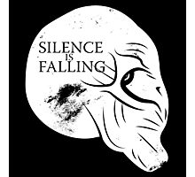 Silence is Falling Photographic Print