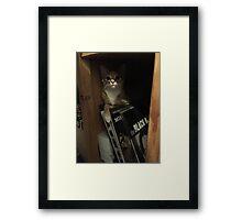 Music Cat Framed Print
