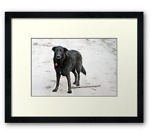 Our Dear Maggie Framed Print
