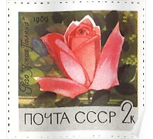 Flowers of The Soviet Union 1969 CPA 3751 stamp Rose Clear Glade USSR Poster