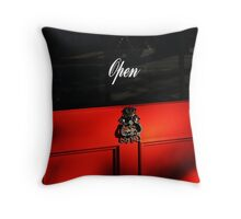 Open, Come Inside - Partridge St Throw Pillow