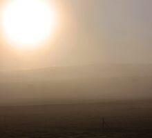 Misty Morning by Etwin