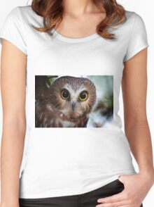 Northern Saw Whet Owl Portrait Women's Fitted Scoop T-Shirt