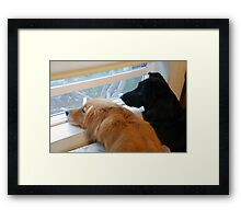 Until I See You Again My Friend Framed Print