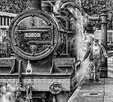 Feeding Time at Pickering Station by Neal Petts