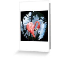 """""""Flamingo. (at Jungle Gardens- Sarasota, Florida)"""" Greeting Card"""