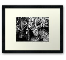 """For Art May Err, But Nature Cannot Miss""...Dryden Framed Print"