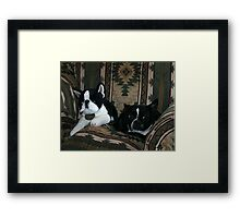 which one is the real zoe? Framed Print