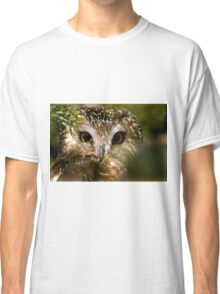 Northern Saw Whet Owl Classic T-Shirt