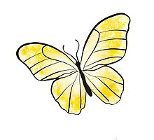 Yellow Butterfly by Rachel Counts