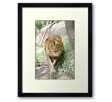 African Pride & Joy Framed Print