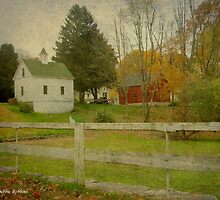 White Barn & Red Barn by Debbie Robbins