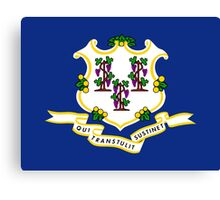 State Flags of the United States of America -  Connecticut Canvas Print