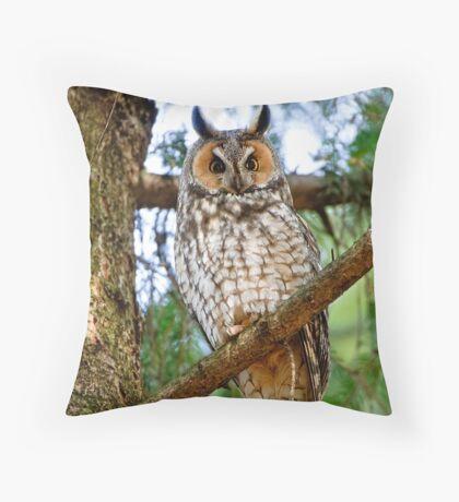 LEO - Long Eared Owl - Ottawa, Ontario Throw Pillow
