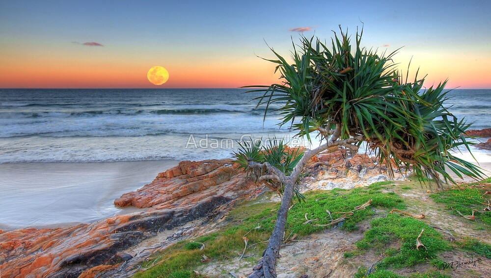 Hunter's Moonrise at Coolum by Adam Gormley