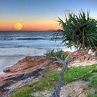 Hunter's Moonrise at Coolum by Adam Gormley