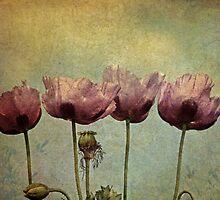 ~Pretty Maids all in a Row~ by Lynda Heins