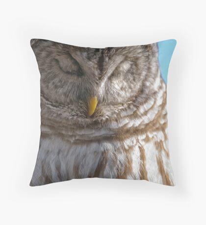 Barred Owl in Tree - Brighton, Ontario Throw Pillow