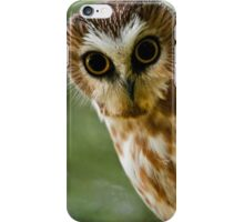 Northern Saw Whet Owl On Branch iPhone Case/Skin