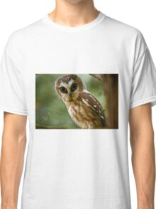 Northern Saw Whet Owl On Branch Classic T-Shirt