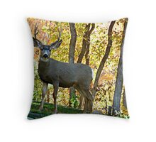 Safe from the hunt. © Throw Pillow