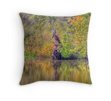 The Fishing Hole Throw Pillow