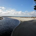 The Beauty of North West Tasmania. by kaysharp