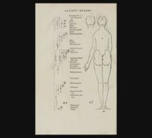 Famous Painter Parts Human Body Symmetry Four Books Geomety 1557 Albrecht Durer 0042 Female Back Kids Tee