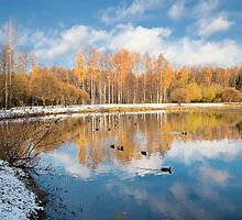 The first snow by Alexey Gusarsky