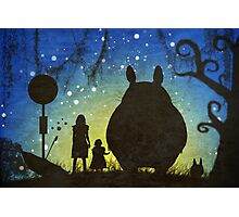 Small Spirits (Totoro) Photographic Print