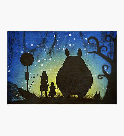 Small Spirits (Totoro) Photographic Print