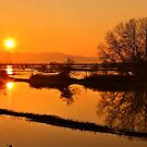 Sunset @ Lake Kerkini by Hercules Milas