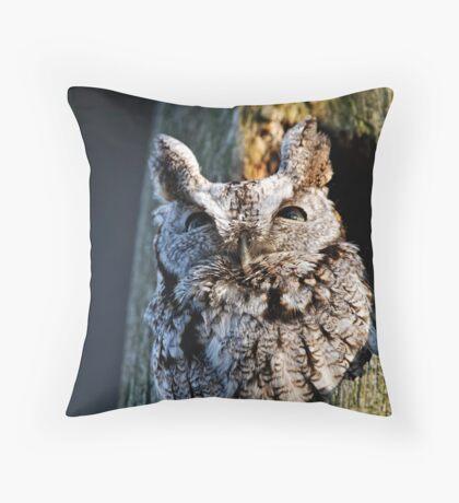 Screech Owl - Ottawa, Ontario Throw Pillow